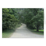 Tree lined path through woods greeting card