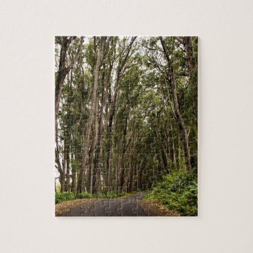 Tree Lined Road Jigsaw Puzzle