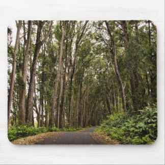 Tree Lined Road Mouse Pad