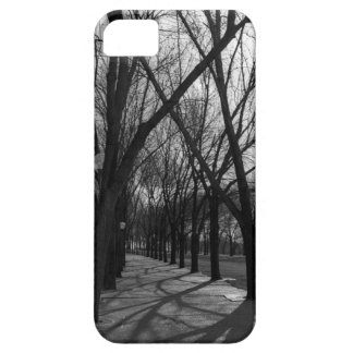 Tree Lined Trail iPhone SE/5/5s Case