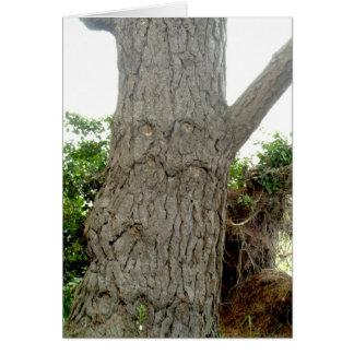 Tree Man Card