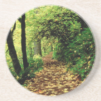 Tree Maple Lined Silver Creek Beverage Coaster