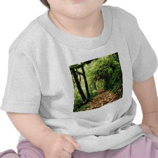 Tree Maple Lined Silver Creek Tee Shirt