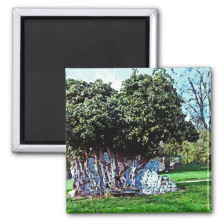 Tree Merged with Stone - Mortemer Abbey - France 2 Inch Square Magnet