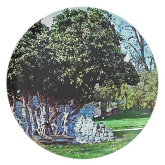 Tree Merged with Stone - Mortemer Abbey - France Plate