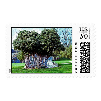 Tree Merged with Stone - Mortemer Abbey - France Postage