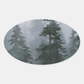 Tree Mist Storm Mount Hood Oval Sticker