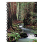 Tree Montgomery Woods California Spiral Notebook