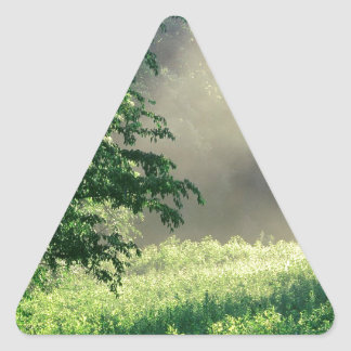 Tree Morning Meadow Triangle Sticker