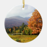 Tree Mount Mansfield Vermont Ornament