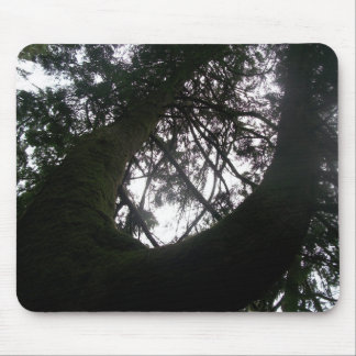 Tree mouse mouse pad