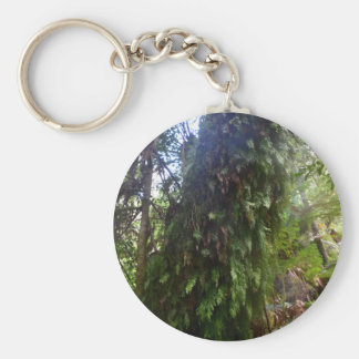 TREE MT FIELD NATIONAL PARK TASMANIA KEYCHAIN