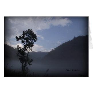 Tree near Fontana Dam, North Carolina Cards