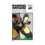TREE NESTING PILEATED WOODPECKERS ~ STAMPS