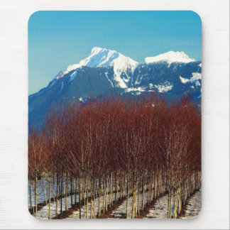 Tree Nursery and Snow Covered Mountains Mouse Pad