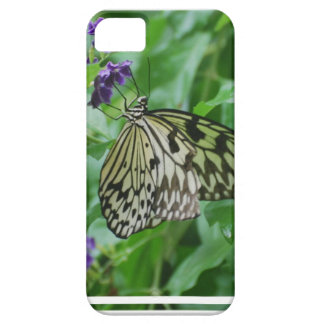 Tree Nymph Butterfly iPhone 5 Cases
