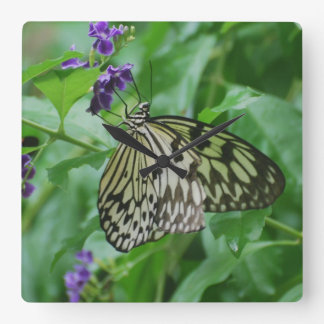 Tree Nymph Butterfly Square Wallclock