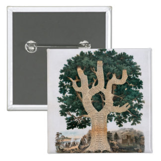 Tree Of Knowledge 2 Inch Square Button