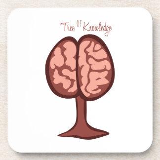 Tree Of Knowledge Coasters