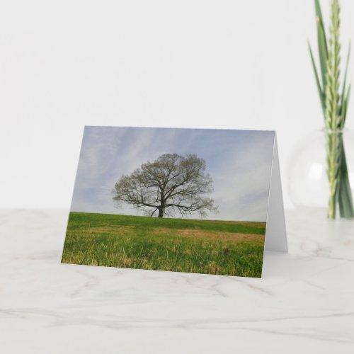 Tree of life Card card