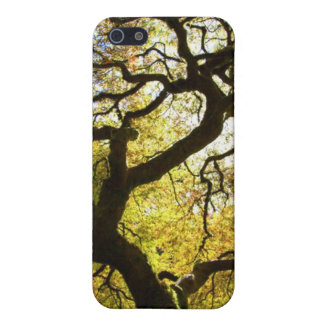Tree of Life Cases For iPhone 5