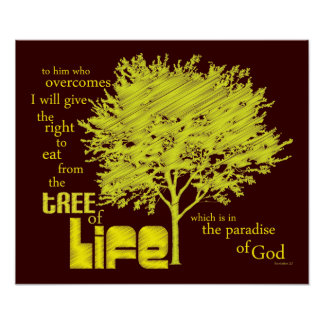 Tree of Life Christian Scripture canvas print
