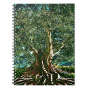 Tree of Life Green Notebook (<em>$13.70</em>)