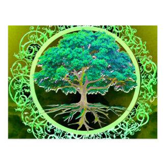 Tree of Life Health Postcard