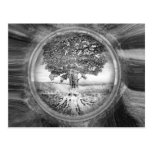 Tree of Life Hope Black White Postcard