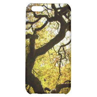 Tree of Life iPhone 5C Cases