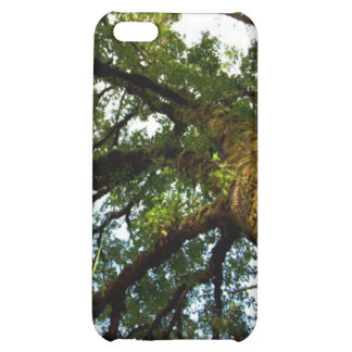 Tree of Life iPhone 5C Covers