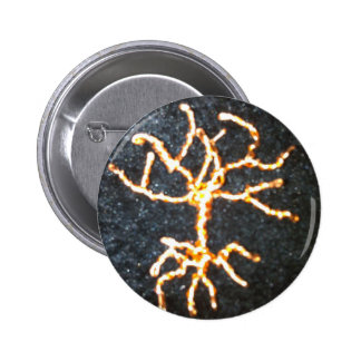 Tree of Life.jpg Pinback Button