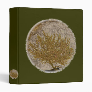TREE OF LIFE, MOSS ON A ROCK 3 RING BINDERS