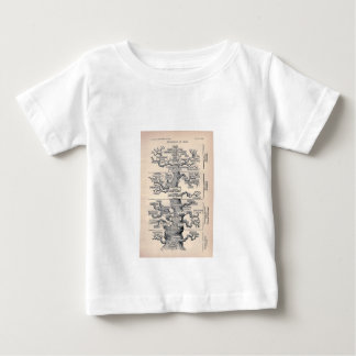 Tree Of Life / Pedigree Of Man Baby T-Shirt