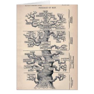 Tree Of Life / Pedigree Of Man Greeting Card