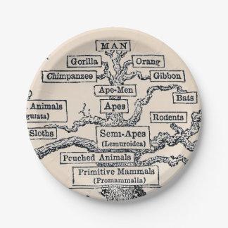 Tree Of Life / Pedigree Of Man Paper Plate