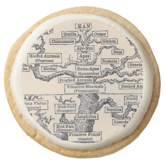 Tree Of Life / Pedigree Of Man Round Shortbread Cookie