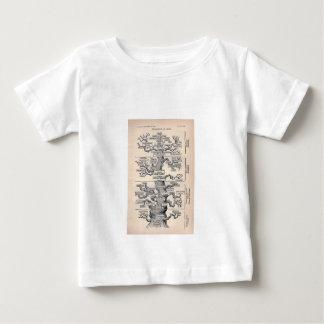 Tree Of Life / Pedigree Of Man Tshirts