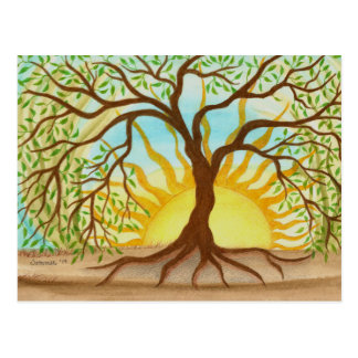 Tree of Life Post Card