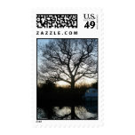 Tree of life postage stamp