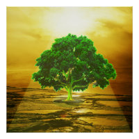 Tree of Life Sunset Poster