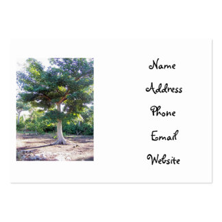 Tree of Wisdom-business cards