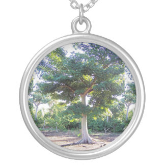 Tree of Wisdom-necklace Silver Plated Necklace