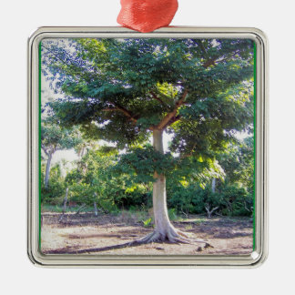 Tree of Wisdom-prem square ornament