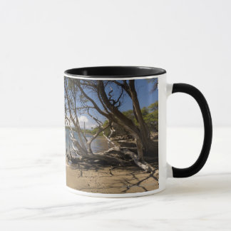 Tree On A Beach Along The Coastline Mug