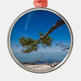 Tree on a beach on shore of the Baltic Sea Metal Ornament