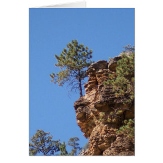 Tree on a Cliff Card