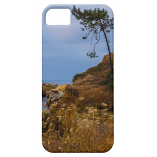 Tree On A Cliff iPhone 5 Covers