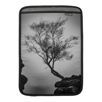Tree on a Cliff MacBook Sleeve
