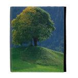Tree on a Hill iPad Folio Covers